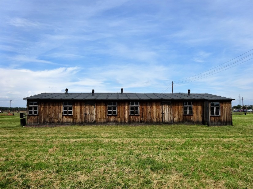Auschwitz e arte: abissi e vette dell'animo umano