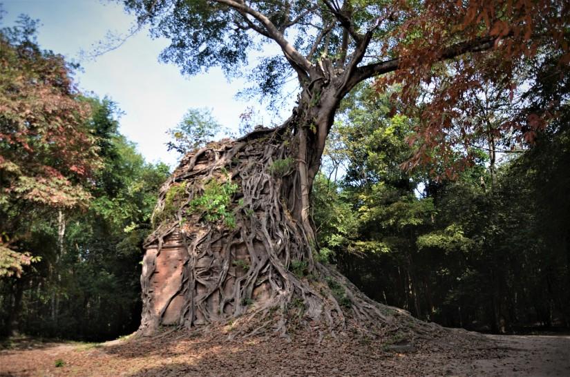 Sambor Prei Kuk, alla scoperta del più importante sito pre-angkoriano dellaCambogia