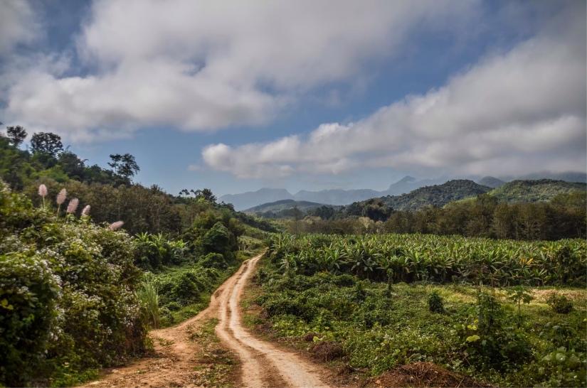 Le grotte di Pak Ou, le cascate di Tam Kuang Si e un trekking nella giungla, a giro nei dintorni di LuangPrabang